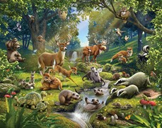 Tapeta 3D Walltastic - Animals of the Forest